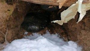 Bitlis'te terör örgütüne ait 8 sığınak ve 4 depo bulundu
