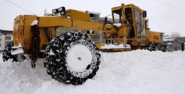 Van'da karla mücadele çalışmaları hız kazandı