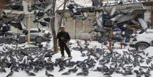 Kuşların yem mücadelesi görsel şölen oluşturdu