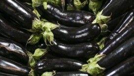 Kastamonu'da zam şampiyonu patlıcan