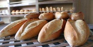 Günde 5 milyon ekmek israf oluyor: En çok israf lokantalarda