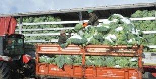 Kışlık sebze fiyatları üreticinin yüzünü güldürmedi