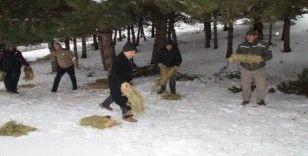 Akşehir'de yabani hayvanlar için doğaya yem bırakıldı