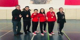 Badminton bölgesi birincisi Hafik oldu