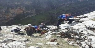 AFAD ekipleri mahsur kalan keçi için seferber oldu