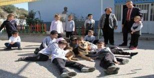 (Özel) Alanya'da engelli köpek 'Şirin' öğrencilerin ilgi odağı oldu