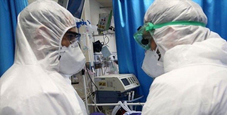 WHO:  '24 saatte koronavirüsünden 343 kişi öldü'
