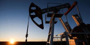 Düşük petrol fiyatları, Türkiye'nin gaz ithalat faturasını 3 milyar dolar azaltacak
