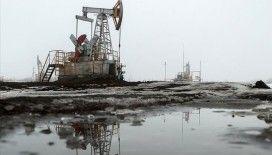 Rusya Enerji Bakanlığı: 'Rusya için petrolde makul fiyat 45-55 dolar'