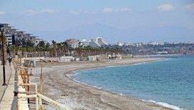Dünyaca ünlü sahil onlara kaldı, anne ve yavru köpekler gülümsetti