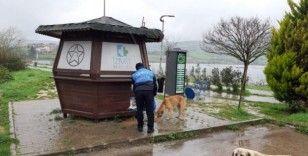 İzmit'te sokak hayvanları unutulmuyor