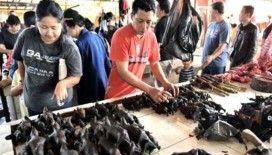 Koronavirüsün ortaya çıktığı hayvan pazarları yeniden açıldı