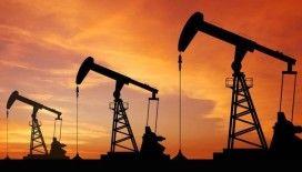 EIA: Petrol fiyatlarındaki dalgalanma 2007'den bu yana en yüksek seviyede