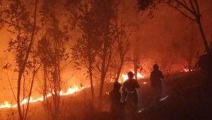 Çin'de orman yangınında itfaiye ekibi mahsur kaldı