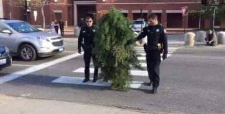 Sırbistan'da sokağa çıkma yasağını delen 'ağaç' yakalandı