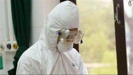 Gürcistan'da koronavirüs vakaları 100'ü geçti