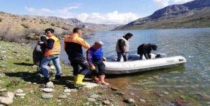 Siirt'te baraj suyu yükseldi, mahsur kalan kediler kurtarıldı