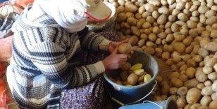 """""""Üretim durursa hayat durur"""" diyerek patates ekimini sürdürüyorlar"""