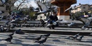 Osmangazi'de aç kalan güvercinler beslendi
