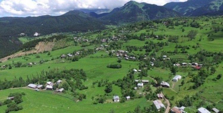Artvin'de bir köy daha karantinaya alındı