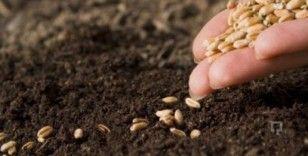 Erzincan'da tohumun yüzde 75'i üreticiye hibe olarak verilecek