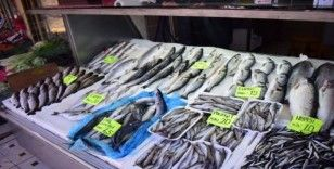 Balıkçı esnafının zor günleri