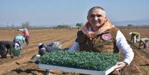 Tarımsal ürün alanlarına yerinde inceleme