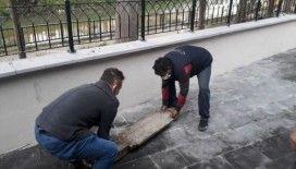 Tarihi mezar taşını vatandaşlar buldu