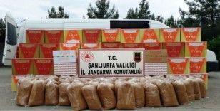 Şanlıurfa'da 1 milyon 500 bin kaçak makaron ele geçirildi