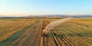Kovid-19 tarımın önemini ortaya koydu