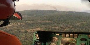 Yangın 5 saatte kontrol altına alınabildi, 50 hektar alan zarar gördü