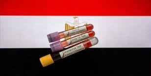 Mısır'da memur maaşlarında yüzde 1'lik Kovid-19 kesintisi