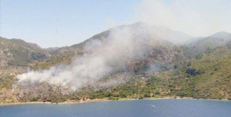 Marmaris'te makilik ve ormanlık alanda yangın