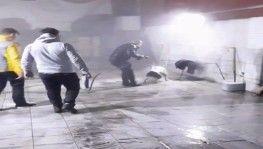 İstanbul'da pitbull dehşeti kamerada