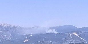 Demre'de ormanlık alanda yangın