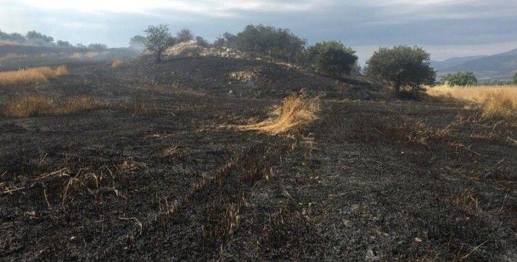 İzmir'de ekin tarlaları küle döndü