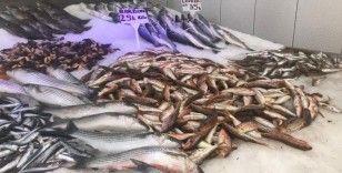 Koronavirüs balık fiyatlarını düşürdü