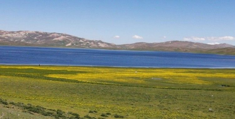 Yeşilin, mavinin ve sarının buluştuğu Keşiş Gölü hayran bırakıyor