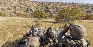 Mardin'de terör örgütü PKK ve işbirlikçilerine şafak vakti operasyon