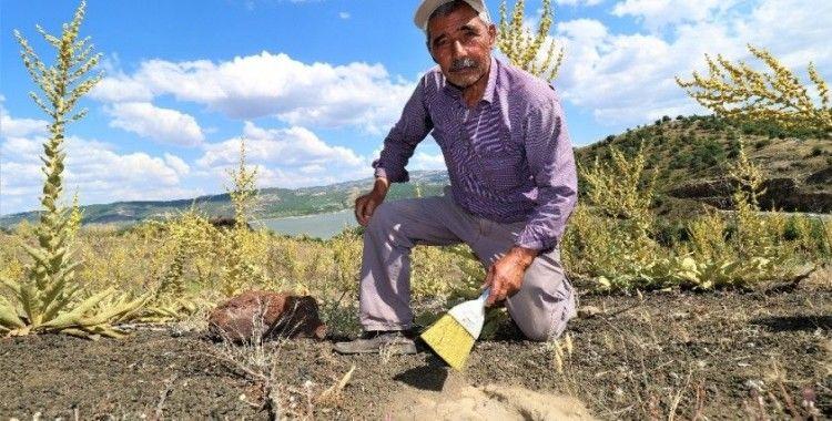 12 bin yıllık ayak izlerinin gönüllü koruyucusu