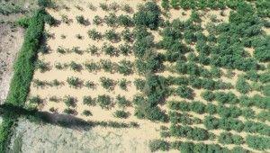 Afet bölgesinde binlerce dönüm tarım arazisi sular altında