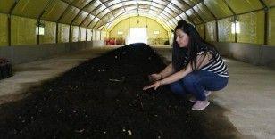 Hataylı kadın girişimci 4 milyon solucanla gübre üretiyor
