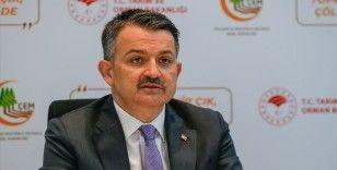 Bakan Pakdemirli: TMO'ya ürün veren üreticilerimize 200 milyon lira ödeme yaptık