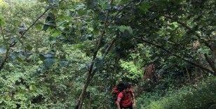 Kayıp 7 yaşındaki İkranur her yerde aranıyor