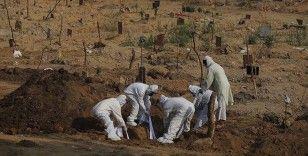 Kovid-19'dan Brezilya'da 1290, Meksika'da 654, Hindistan'da 444 kişi öldü