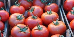 Vekil sıkı pazarlık yaptı, domates 2 lira 80 kuruşu gördü