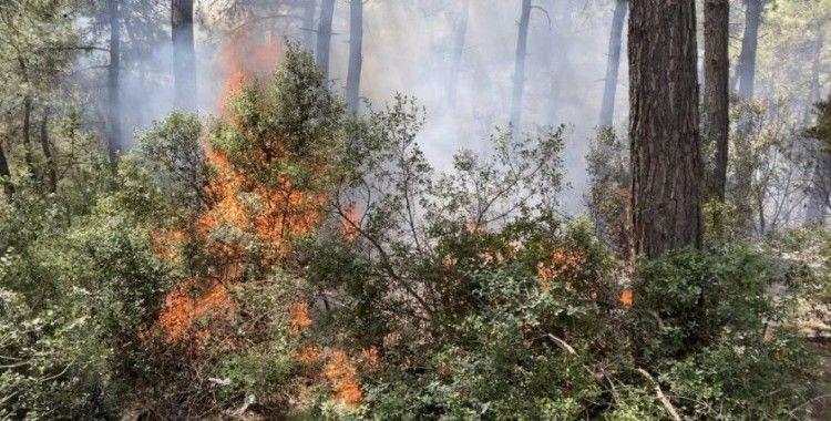 Sarıyer'de 500 metrekarelik alan alev alev yandı