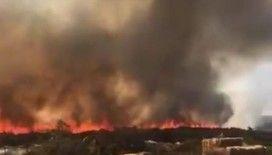 Alaçatı'da korkutan yangın: Dumandan boğuluyorlardı!