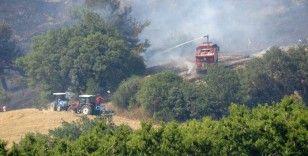 Çanakkale'deki yangın devam ediyor