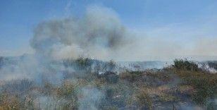 İznik Gölü'ndeki sazlık yangını giderek büyüyor